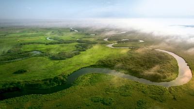 Biebrza är bara 16 mil lång. Rikedomen på fåglar och andra djur gör ändå att den polska floden kan kallas en europeisk amazonflod.