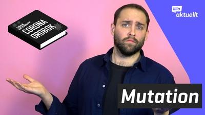Vad är en mutation?
