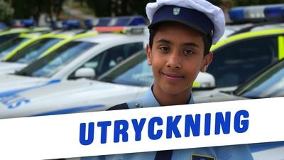 10. Om en polisbil kommer körandes, hur ska jag tänka?