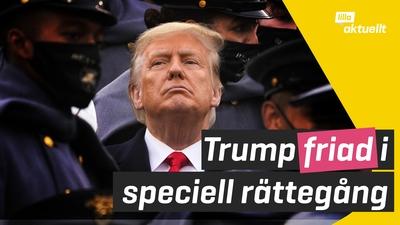 Trump friad i riksrätten