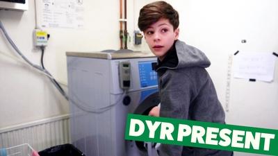 Elliot – Dyr present