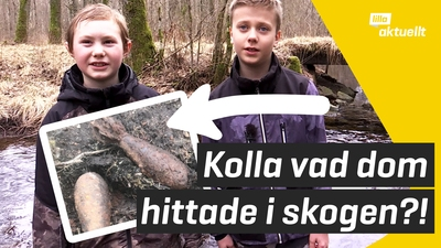 De hittade granater i skogen!