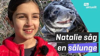10-åriga Nathalie upptäckte en säl