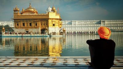 Sikhisk pilgrim vid Gyllene templet (Sri Harmandir Sahib) i norra Indien.
