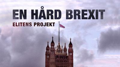 Efter folkomröstningen om Brexit 2016 inledde delar av Storbritanniens maktelit och finansvärld en kampanj för att landet skulle lämna EU utan avtal - en hård Brexit.