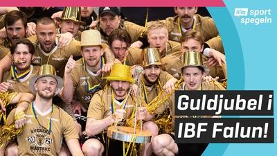 Falun vann andra raka SM-guldet i innebandy