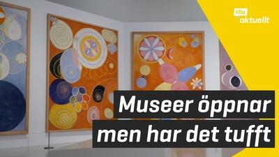 Allt fler museer öppnar - med specialregler