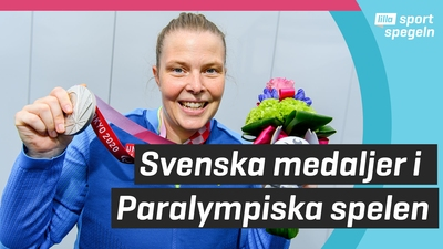 Så gick det för Sverige i Paralympics