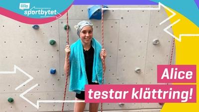 Lilla Sportbytet: från simhopp till klättring
