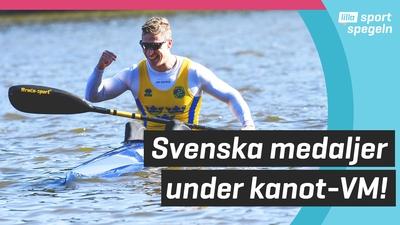 Det blev både guld och silver för Sverige