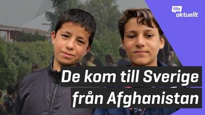 De kom till Sverige från Afghanistan