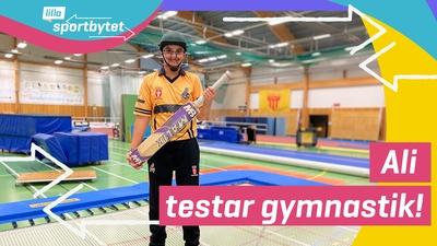 Lilla Sportbytet: från cricket till gymnastik