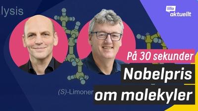Nobelpriset i kemi på 30 sekunder