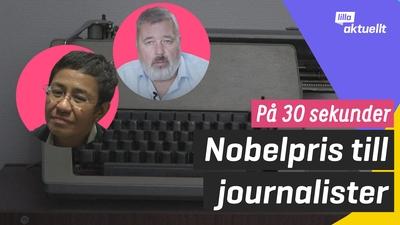 Nobels fredspris går till journalister
