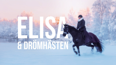 Elisa arbetar skift på det lokala sågverket utanför Piteå men lever för sina hästar. Hon drömmer om att en dag få mäta sig mot hästeliten i dressyrens högsta klass, Grand Prix. - Elisa och drömhästen