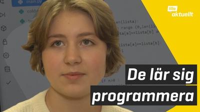 Programmeringsläger för tjejer och icke-binära