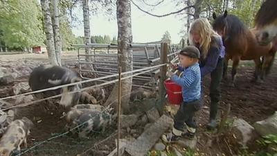 Elias vill hälsa på djuren på bondgården!