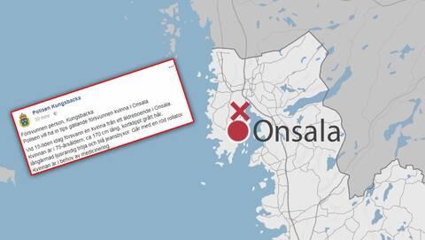 Jobb som Personlig Assistent, anstllning i 439 31 Onsala