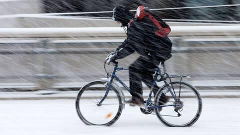 Dejting cyklisterSafari hastighet dating London