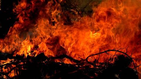 Grenar som brinner våldsamt.