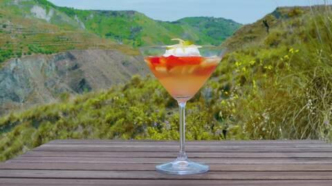 Gelé på färsk frukt och prosecco med apelsinkräm.