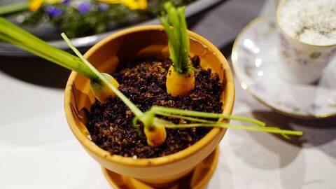 Krondillskokta minimorötter med räkkräm och ätbar jord.