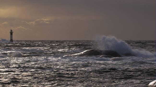 Hård vind över hav