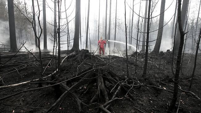 Släckningsarbetet fortsätter i det brandhärjade området. 200 personer kämpade på marken med att hålla elden i schack.