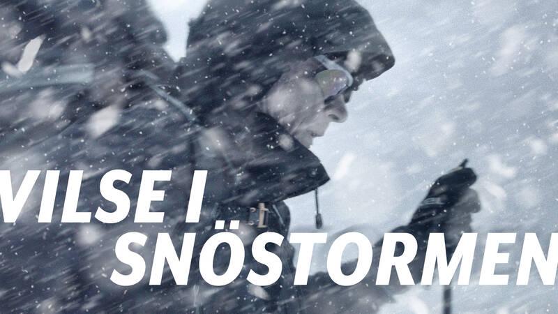 Vilse i snöstormen