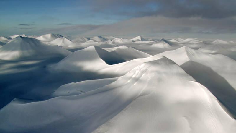 Sommaren i Arktis bjuder på skönhet och lågmäld dramatik