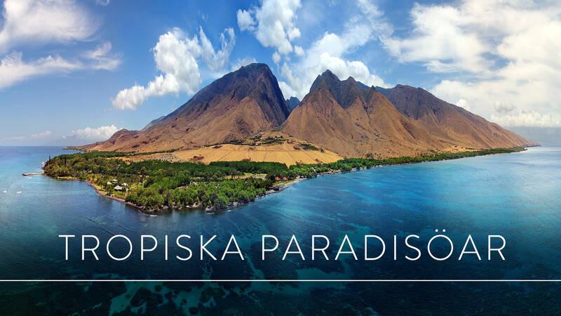 Världens natur: Tropiska paradisöar