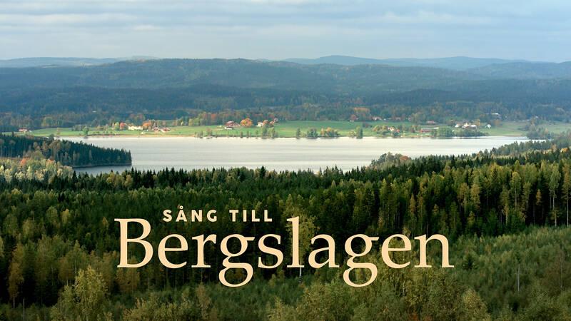 En film genom årstidernas växlingar med människor och djur i Bergslagen. Närheten till naturen och de vilda djuren sätter sin prägel på människorna här.