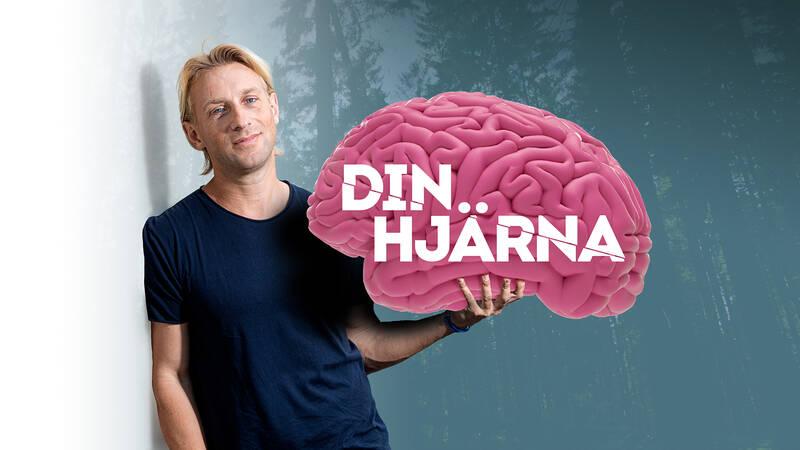 Anders Hansen i Din hjärna.