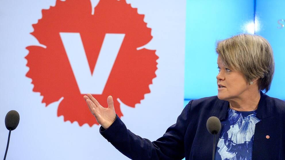 Ulla Andersson, Vänsterpartiets ekonomisk-politiska talesperson