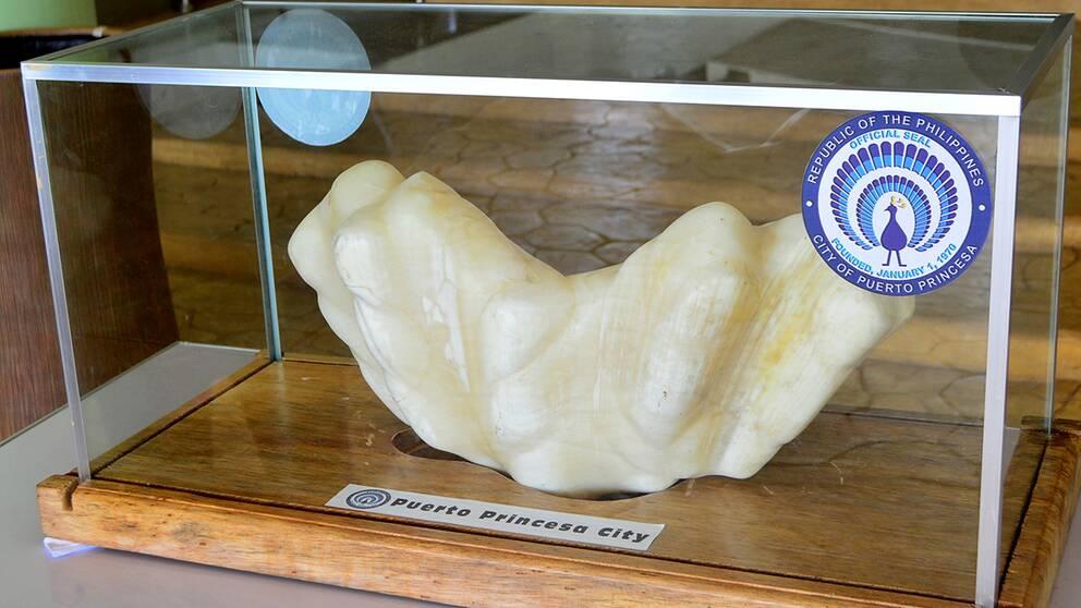 världens största pärla