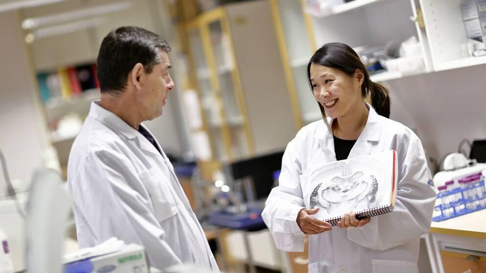 En bild på Professor Markus Heilig och Estelle Barbier vid Linköpings universitet. De samtalar i ett laboratorium.