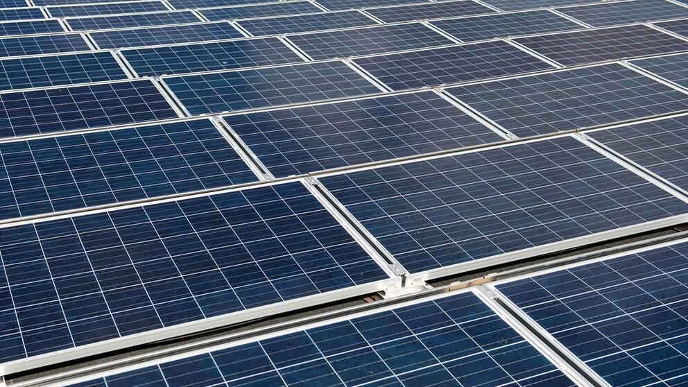 Sveriges största solcellspark byggs i Kalmar