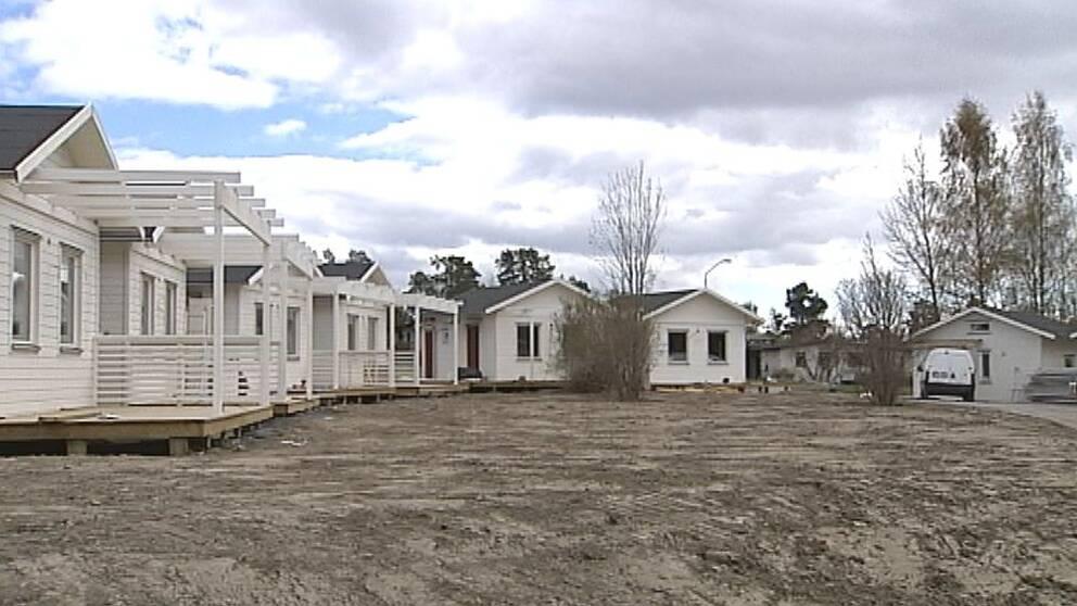 fler hus i rad av typen Attefallshus, i Östersund