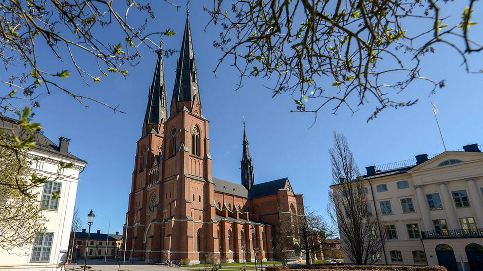 Uppsala domkyrka, domkyrka i ärkestiftet.