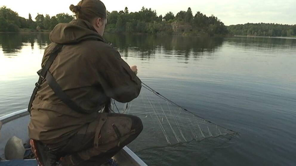 Fiskare tar upp nät från båt i Brunnsviken