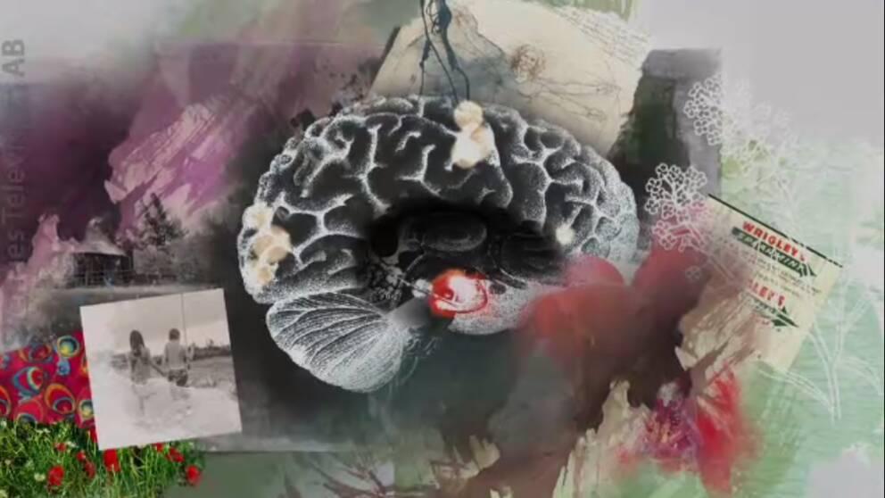En illustration av en hjärna, med foton och andra saker runt om den, som kan finnas i våra minnen.