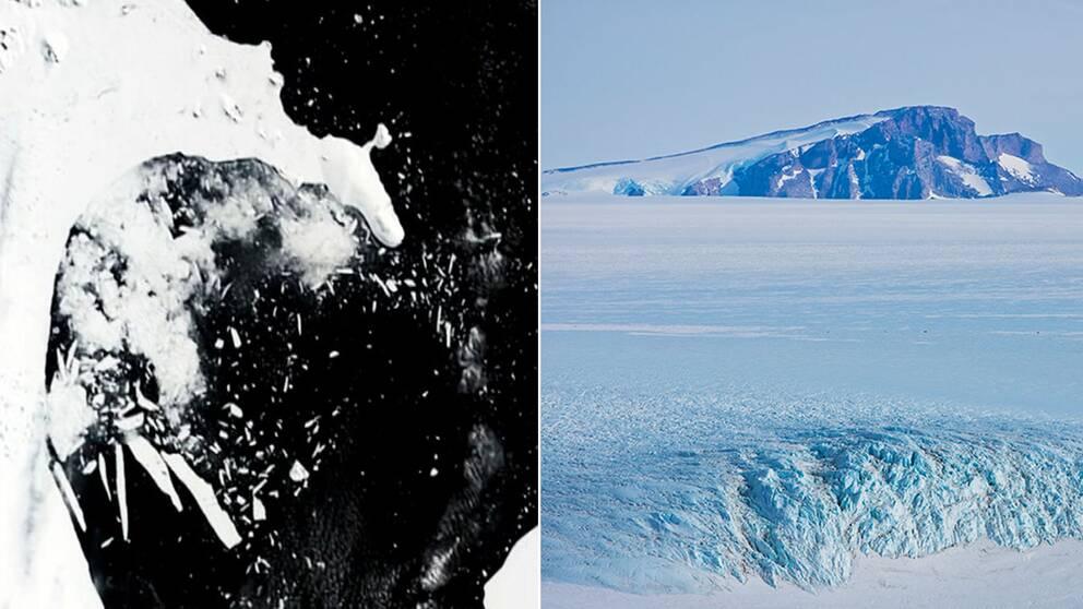 2002 bröts den mindre shelfisen Larsen B upp på en dryg månad.