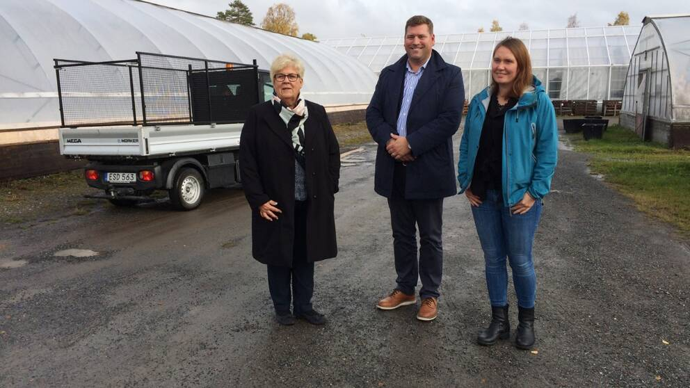 coop skellefteå ny etablering norrböle växthus
