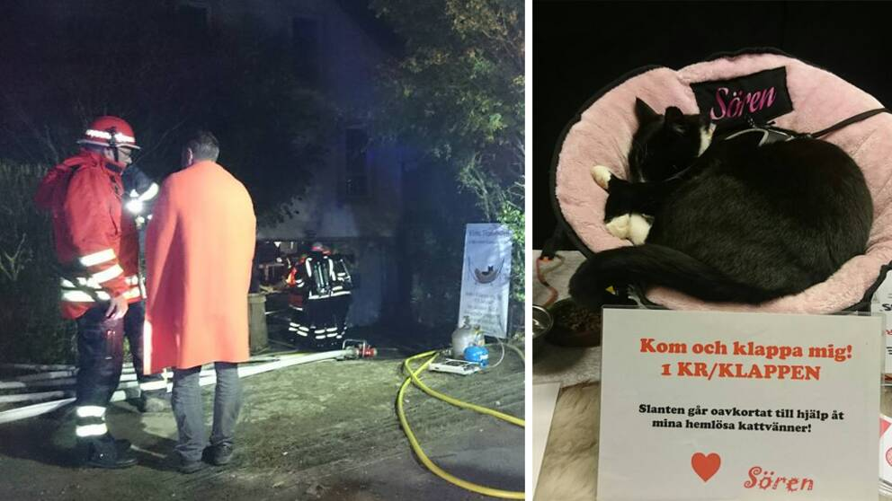 Brandmän och katten Sören i en korg