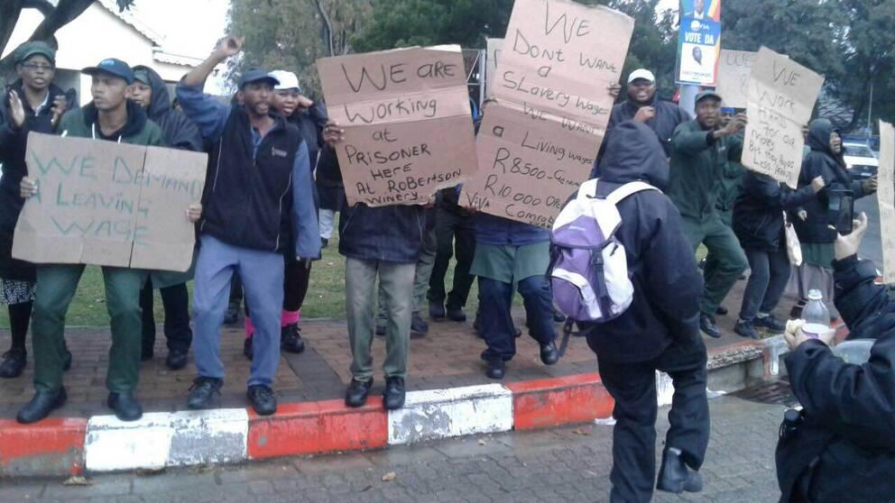 Vinarbetare som protesterar i Sydafrika.