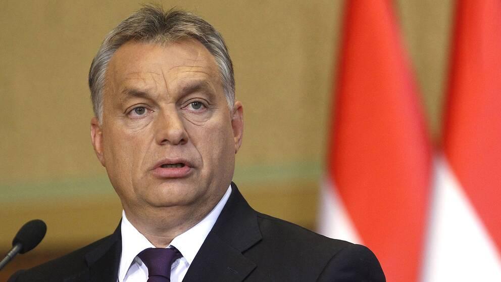 Ungerns premiärminister Viktor Orbán talar på en presskonferens på tisdagen med anledning av helgens folkomröstning om EU:s migrationskvoter.