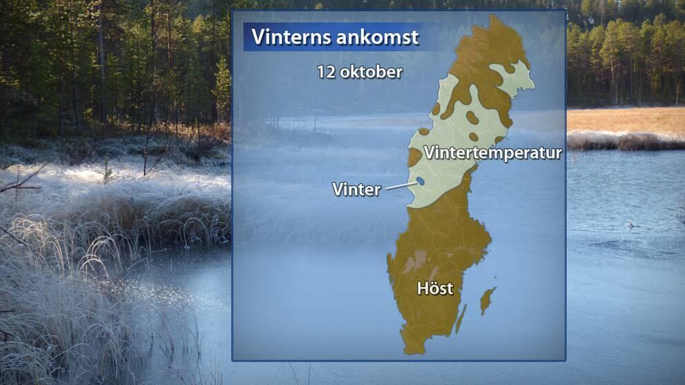 Årstidernas läge efter temperaturdygnet den 12 oktober avslutats. Brunt betyder att hösten har anlänt, vitt betyder vintertemperatur (dygnsmedeltemperatur under 0 grader) i 1–4 dygn och blått betyder att vintern har anlänt.