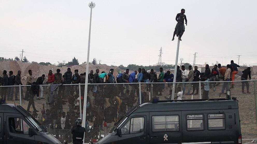 Migranter har klättrat upp på det stålstängsel som skiljer Marocko från den spanska enklaven Melilla.