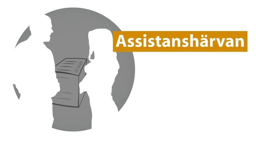 Assistender och chefer i företaget Elma Assistans lurade försäkringskassan genom att fejka tidrapporter från assistenter som inte hade jobbat.