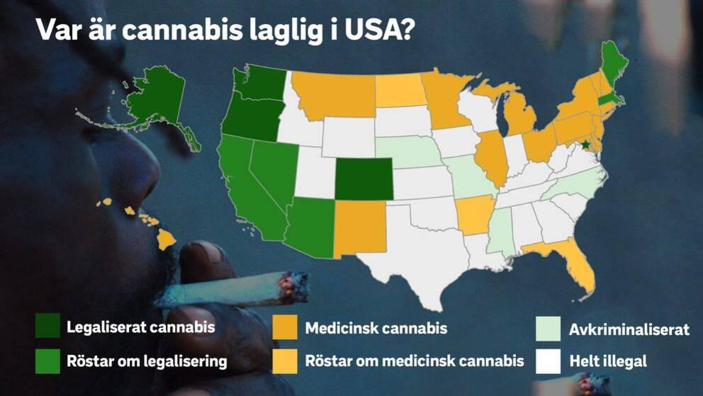 Var är cannabis laglig i USA?